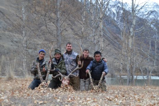 Hunting to maral in Russia