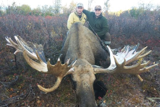 Hunting to moose in Chukotka